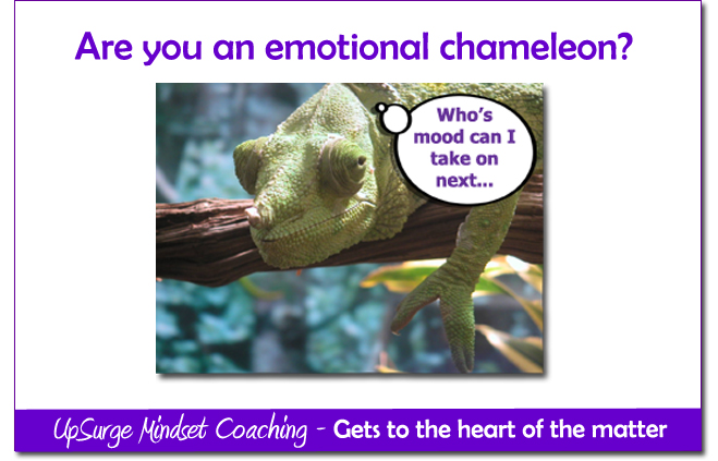 UpSurge Coaching Chameleon